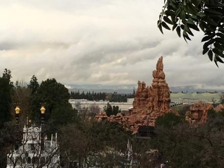 The view from Tarzan's Treehouse