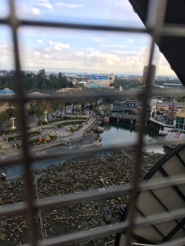 The view from the ferris wheel was spectacular!