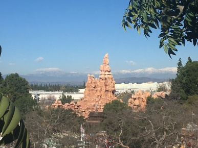 The view from Tarzan's tree was even more spectacular on this sunny day.