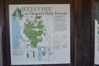 OregonCoast07DSC_0286
