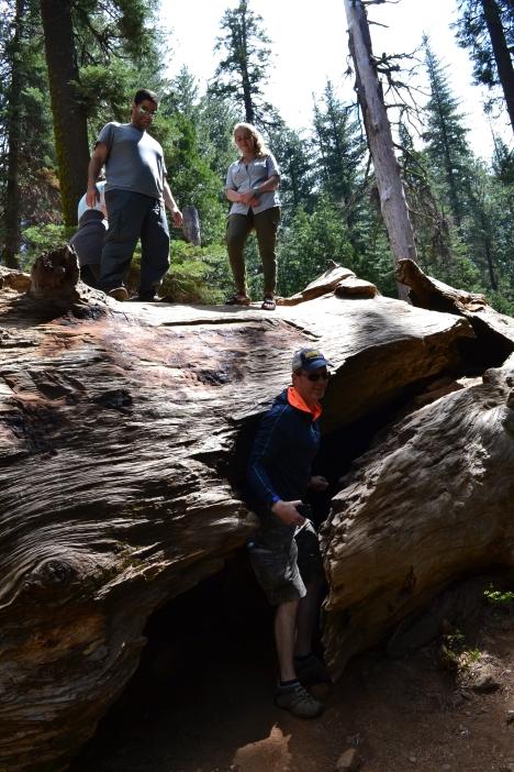 Yosemite11DSC_0712