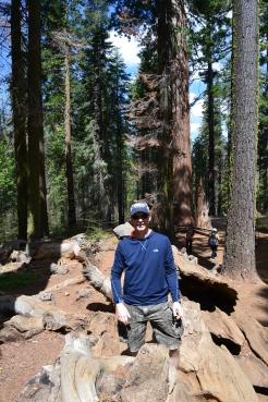 Yosemite11DSC_0714