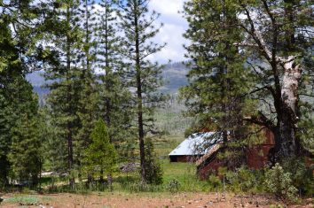 Yosemite11DSC_0735