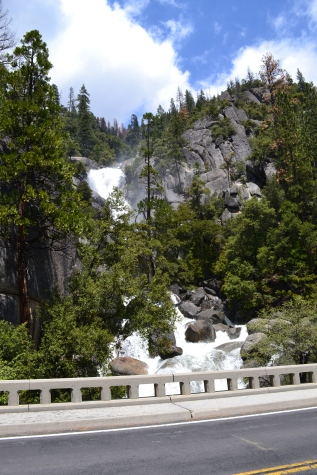 Yosemite11DSC_0742