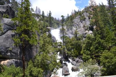 Yosemite11DSC_0743