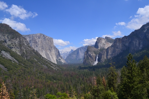 Yosemite11DSC_0752