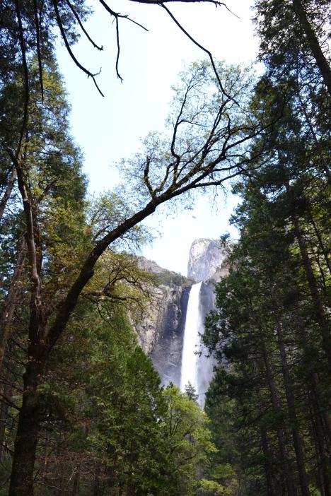 Yosemite11DSC_0761