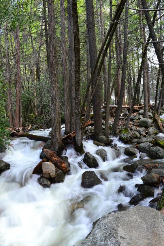 Yosemite11DSC_0764