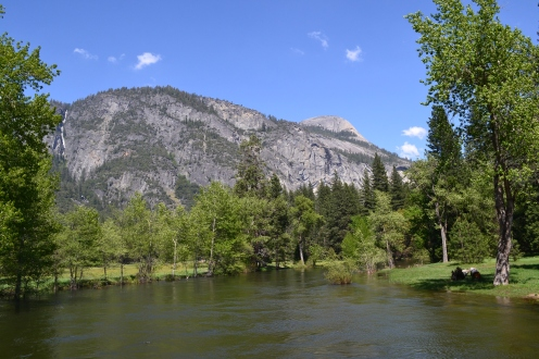 Yosemite11DSC_0782