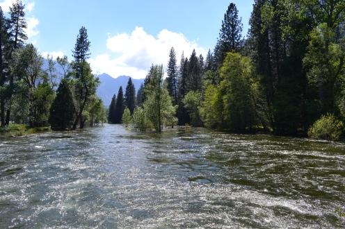 Yosemite11DSC_0783