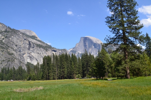 Yosemite11DSC_0789