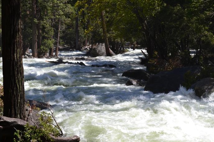 Yosemite11DSC_0795