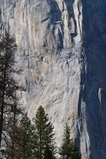 Yosemite11DSC_0809