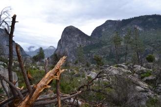 Yosemite12DSC_0845