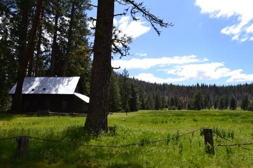 Yosemite12DSC_0899
